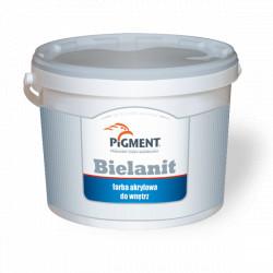 Paint PIGMENT BIELANIT 5L Acrylic White